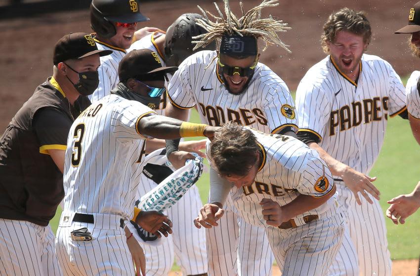 San Diego Padres (Photo by Sean M. Haffey/Getty Images)