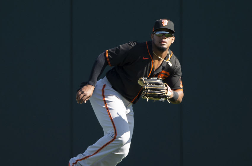 San Francisco Giants (Photo by Ron Vesely/Getty Images)
