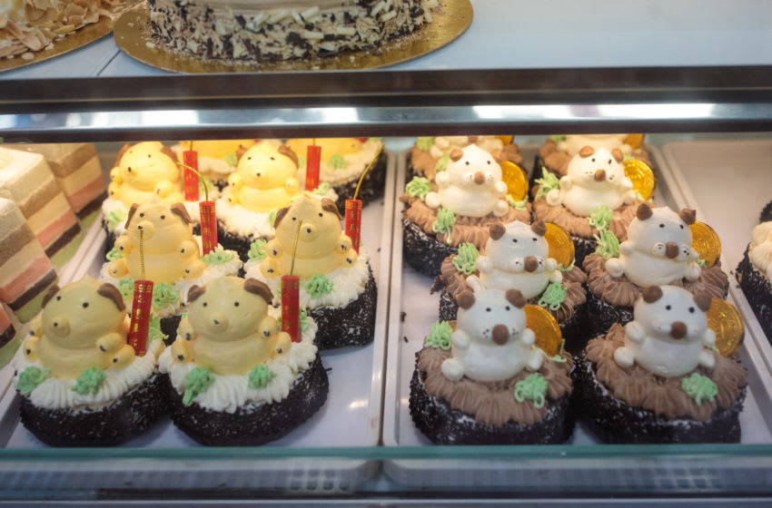 Dog-themed cakes (Photo by Jack Taylor/Getty Images)