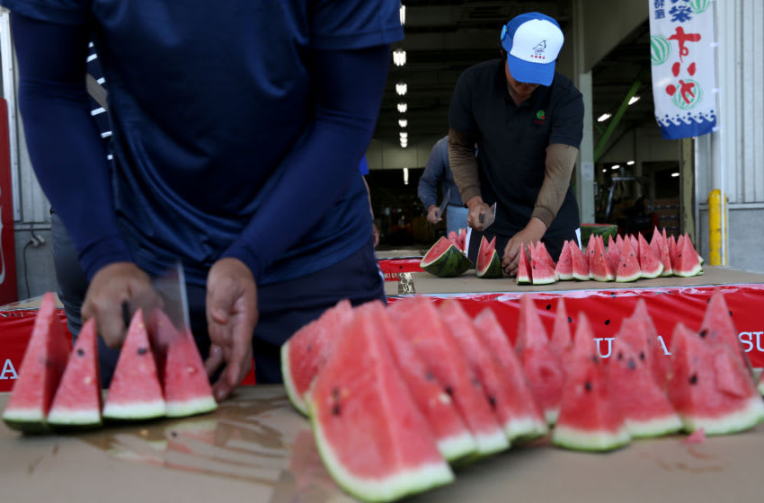 Employees cut freshly harvested Daiei watermelon (Photo by Buddhika Weerasinghe/Getty Images)