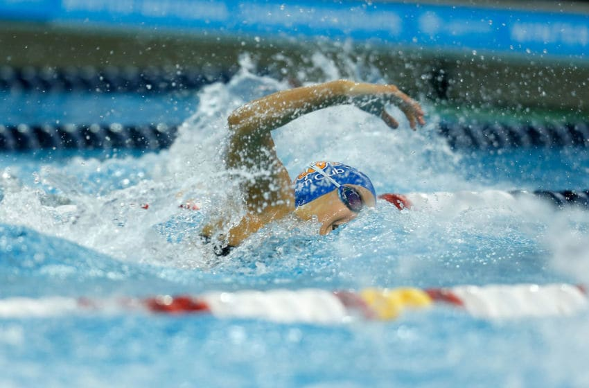 Florida Gator swimming. (Photo by Kirk Irwin/Getty Images)