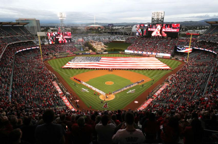 Los Angeles Angels, (Photo by Sean M. Haffey/Getty Images)