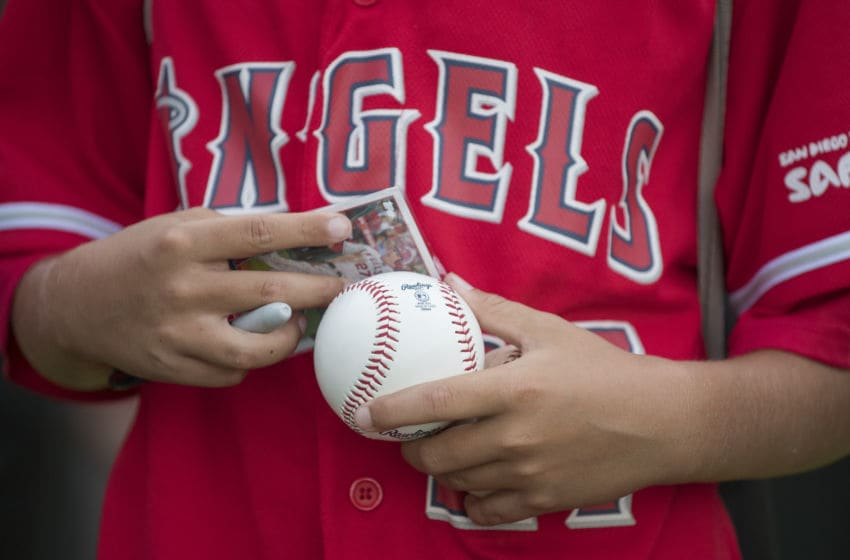 Los Angeles Angels of Anaheim, Mike Trout (Photo by Matt Brown/Angels Baseball LP/Getty Images)
