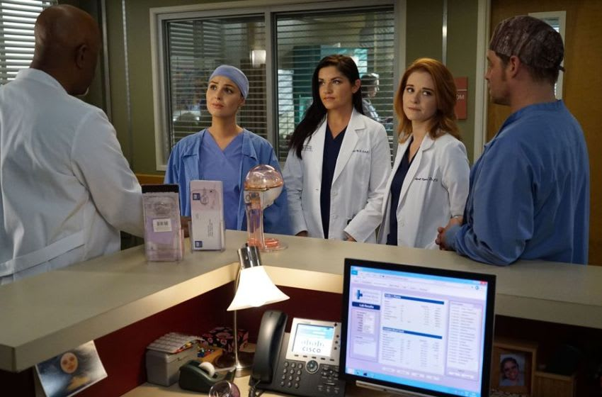Photo Credit: Grey's Anatomy/ABC Image Acquired from Disney ABC Media