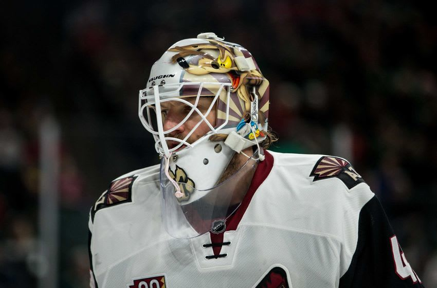 Dec 17, 2016; Saint Paul, MN, USA; Arizona Coyotes goalie Mike Smith (41) against the Minnesota Wild at Xcel Energy Center. The Wild defeated the Coyotes 4-1. Mandatory Credit: Brace Hemmelgarn-USA TODAY Sports