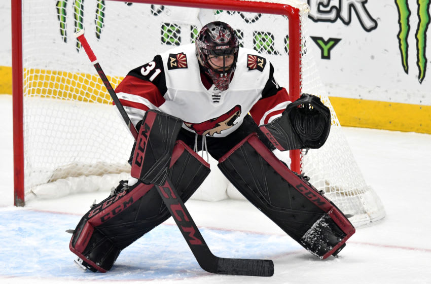ANAHEIM, CA - DECEMBER 29: Arizona Coyotes goalie Adin Hill (31) in action during the first period of a game against the Anaheim Ducks played on December 29, 2018 at the Honda Center in Anaheim, CA. (Photo by John Cordes/Icon Sportswire via Getty Images)