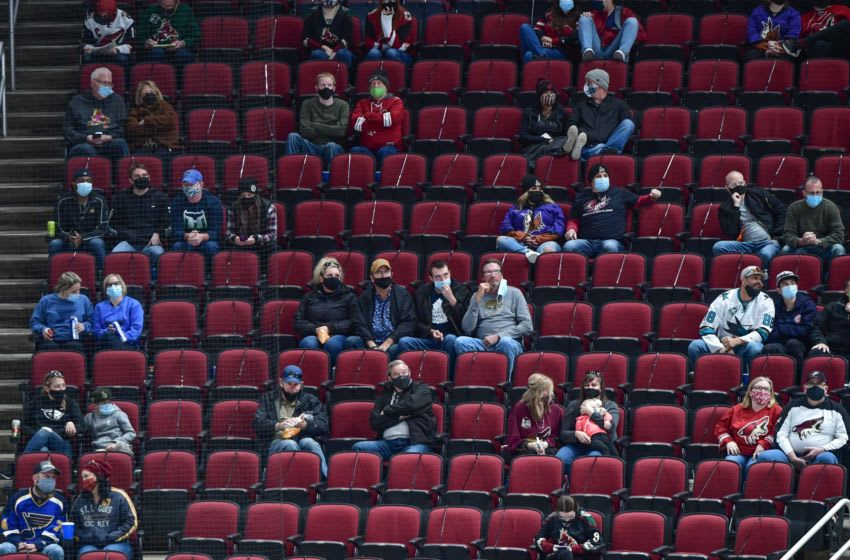 Feb 15, 2021; Glendale, Arizona, USA; Fans look on during the third period of the game between the Arizona Coyotes and the St. Louis Blues at Gila River Arena. Mandatory Credit: Matt Kartozian-USA TODAY Sports