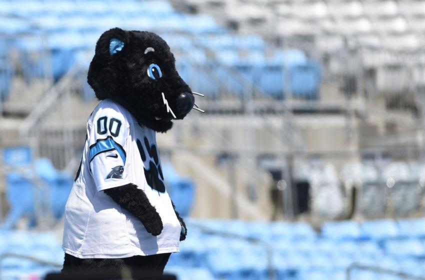 Carolina Panthers mascot (Mandatory Credit: Bob Donnan-USA TODAY Sports)