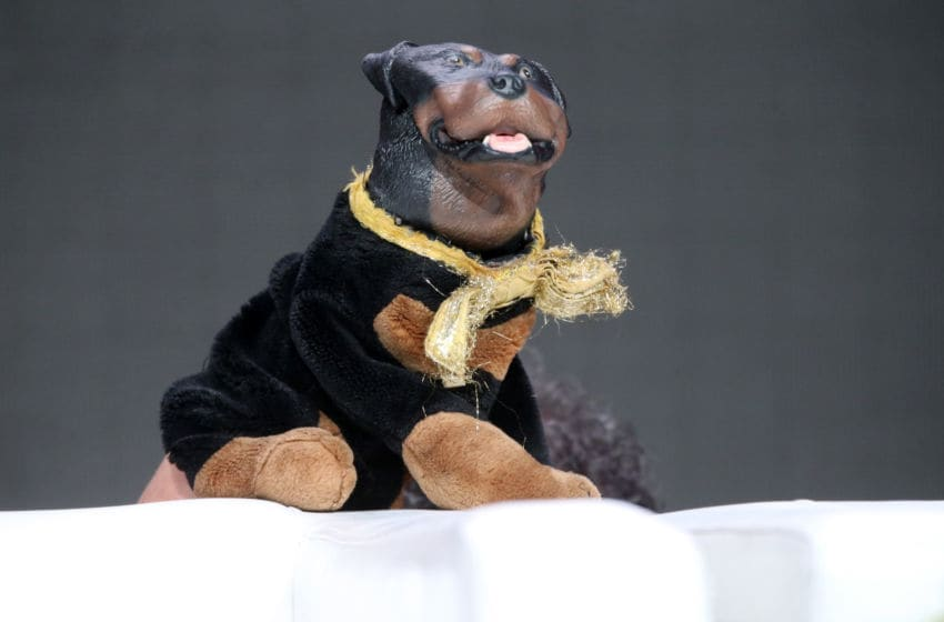 BEVERLY HILLS, CA - AUGUST 05: Triumph, the Insult Comic Dog speaks onstage at the 'Triumph's Summer Election Special 2016' panel discussion during the Hulu portion of the 2016 Television Critics Association Summer Tour at The Beverly Hilton Hotel on August 5, 2016 in Beverly Hills, California. (Photo by Frederick M. Brown/Getty Images)