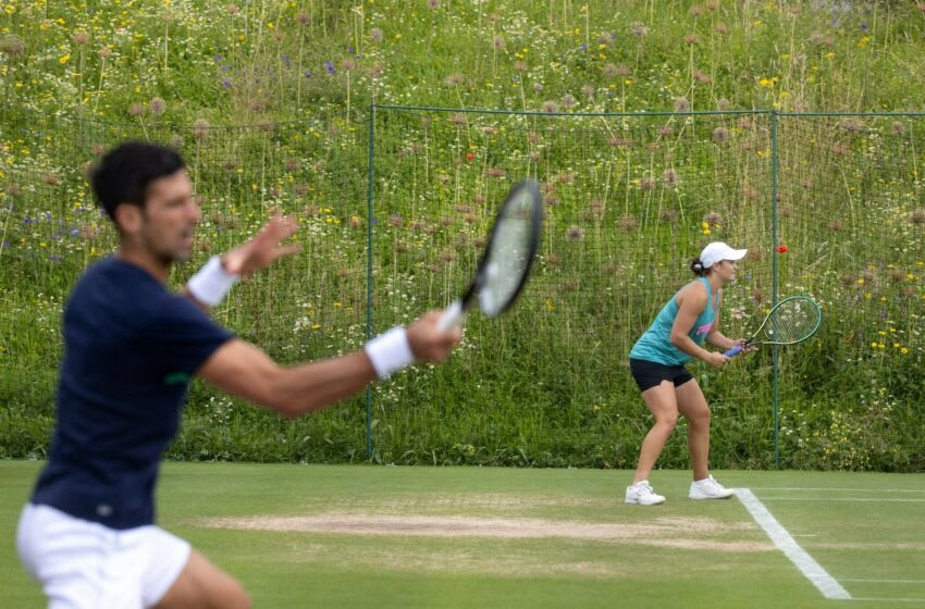 Serbia's Novak Djokovic (L) and Australia's Ashleigh Barty practice on adjoinging couts at the Aorangi Practice Courts on the eighth day of the 2021 Wimbledon Championships at The All England Tennis Club in Wimbledon, southwest London, on July 6, 2021. - RESTRICTED TO EDITORIAL USE (Photo by AELTC/David Gray / POOL / AFP) / RESTRICTED TO EDITORIAL USE (Photo by AELTC/DAVID GRAY/POOL/AFP via Getty Images)