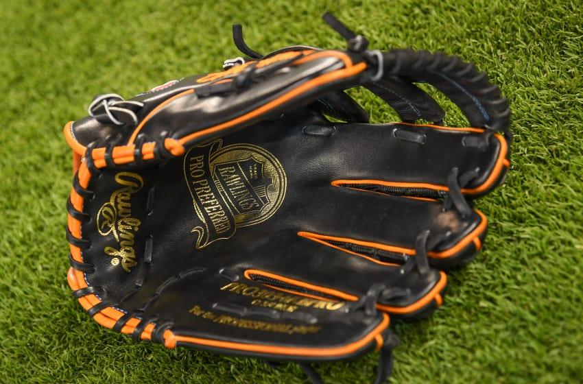 MIAMI, FL - MARCH 29: A detailed photo of the Rawlings baseball glove of Derek Dietrich
