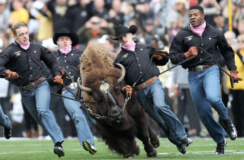 Colorado Football (Photo by Matthew Stockman/Getty Images)