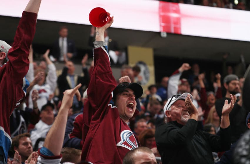 Colorado Avalanche (Photo by Michael Martin/NHLI via Getty Images)