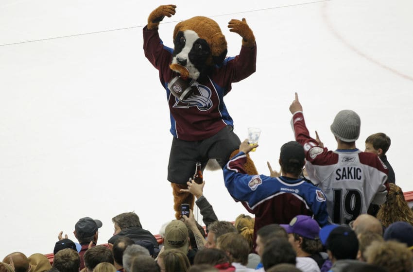 DENVER, CO - NOVEMBER 18: Bernie, the mascot of the Colorado Avalanche, leads the fans in support against the Dallas Stars at the Pepsi Center on November 18, 2011 in Denver, Colorado. (Photo by Doug Pensinger/Getty Images)