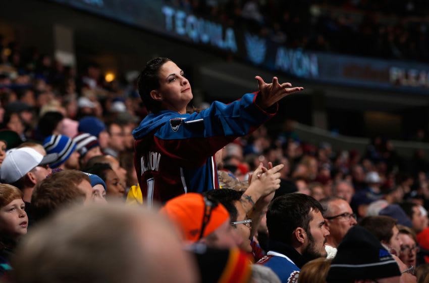 DENVER, CO - FEBRUARY 22: A fan supports the Colorado Avalanche as they face the Tampa Bay Lightning at Pepsi Center on February 22, 2015 in Denver, Colorado. The Avalanche defeated the Lightning 5-4. (Photo by Doug Pensinger/Getty Images)