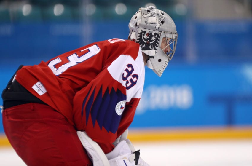 GANGNEUNG, SOUTH KOREA - FEBRUARY 21: Pavel Francouz #33 of the Czech Republic looks on during the game against the United States during the Men's Play-offs Quarterfinals on day twelve of the PyeongChang 2018 Winter Olympic Games at Gangneung Hockey Centre on February 21, 2018 in Gangneung, South Korea. (Photo by Ronald Martinez/Getty Images)
