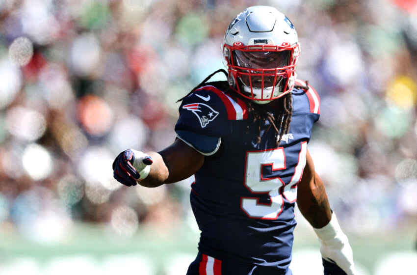 Linebacker Dont'a Hightower #54 of the New England Patriots (Photo by Elsa/Getty Images)