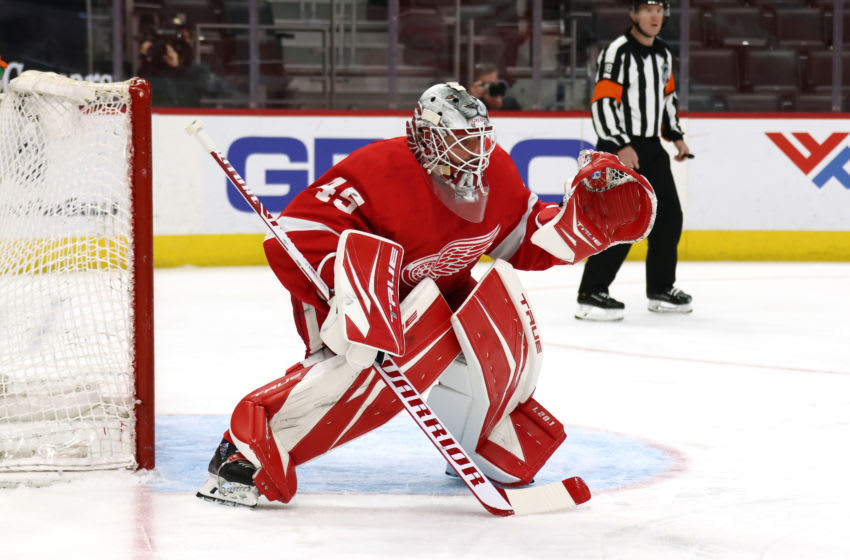 DETROIT, MICHIGAN - MARCH 11: Jonathan Bernier #45 of the Detroit Red Wings skates against the Tampa Bay Lightning at Little Caesars Arena on March 11, 2021 in Detroit, Michigan. (Photo by Gregory Shamus/Getty Images)