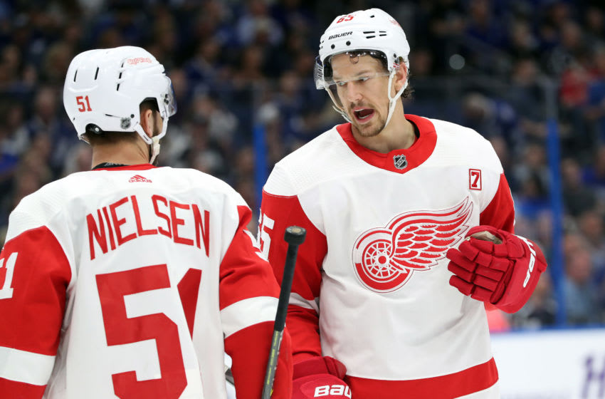 Mar 9, 2019; Tampa, FL, USA; Detroit Red Wings defenseman Danny DeKeyser (65) talks with center Frans Nielsen (51) during the first period against the Tampa Bay Lightning at Amalie Arena. Mandatory Credit: Kim Klement-USA TODAY Sports