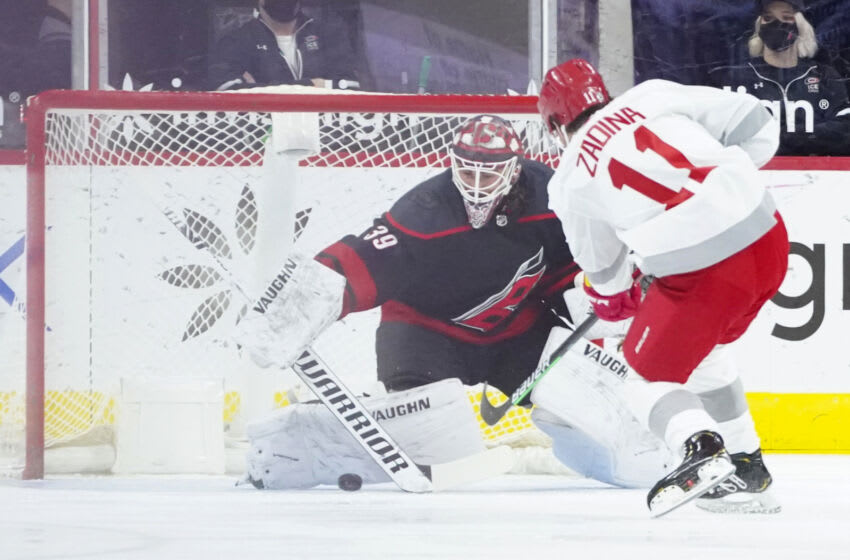 Mar 4, 2021; Raleigh, North Carolina, USA; Carolina Hurricanes goaltender Alex Nedeljkovic (39) stops a shot by Detroit Red Wings right wing Filip Zadina (11) during the first period at PNC Arena. Mandatory Credit: James Guillory-USA TODAY Sports