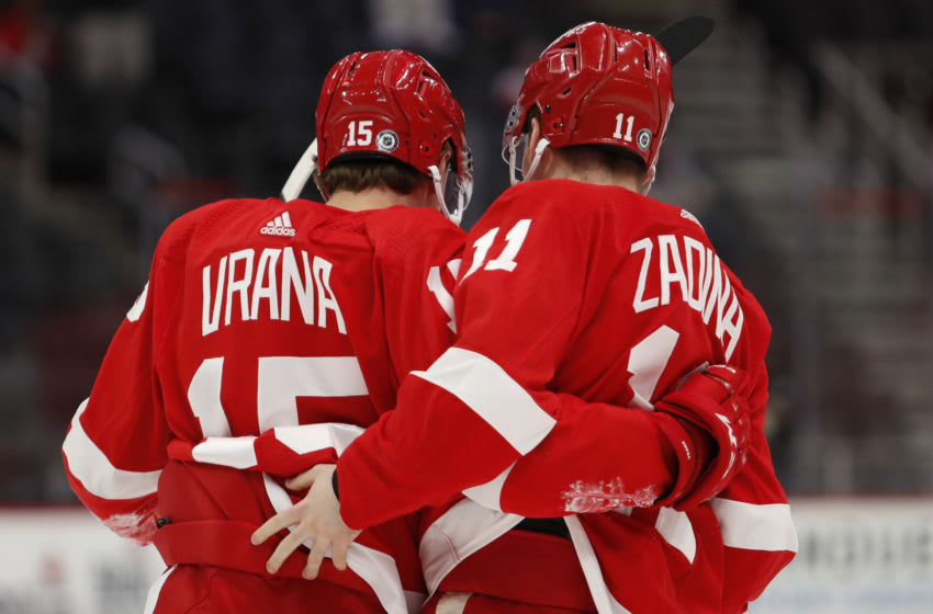Apr 22, 2021; Detroit, Michigan, USA; Detroit Red Wings left wing Jakub Vrana (15) hugs right wing Filip Zadina (11) after scoring a goal during the first period against the Dallas Stars at Little Caesars Arena. Mandatory Credit: Raj Mehta-USA TODAY Sports