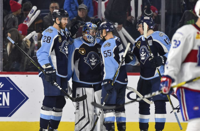 LAVAL, QC - NOVEMBER 15: (L-R) Jarred Tinordi #28, goaltender Troy Grosenick #1, Alexandre Carrier #55 and Yakov Trenin #13 of the Milwaukee Admirals (Photo by Minas Panagiotakis/Getty Images)