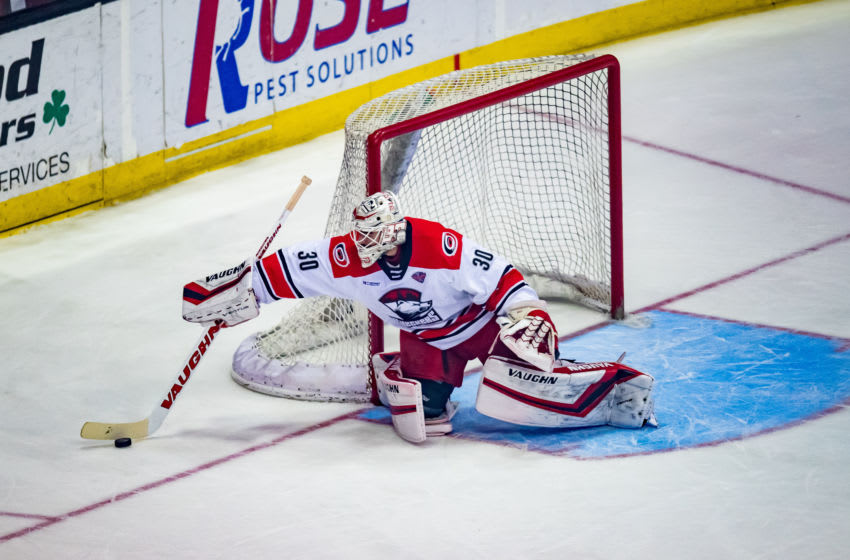 ROSEMONT, IL - JUNE 08: Charlotte Checkers goaltender Alex Nedeljkovic (30) defends the net during game five of the AHL Calder Cup Finals between the Charlotte Checkers and the Chicago Wolves on June 8, 2019, at the Allstate Arena in Rosemont, IL. (Photo by Patrick Gorski/Icon Sportswire via Getty Images)