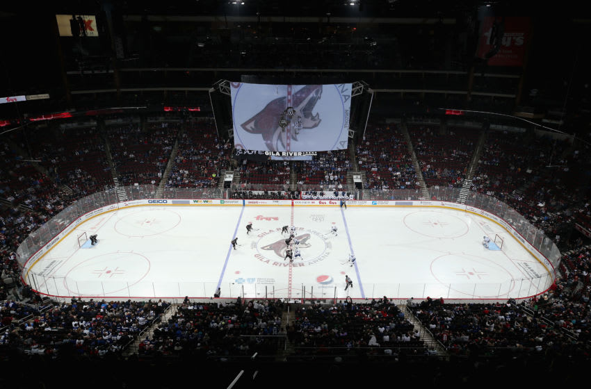 Arizona Coyotes (Photo by Christian Petersen/Getty Images)