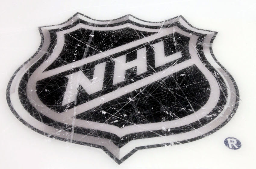 NHL logo (Photo by Bruce Bennett/Getty Images)