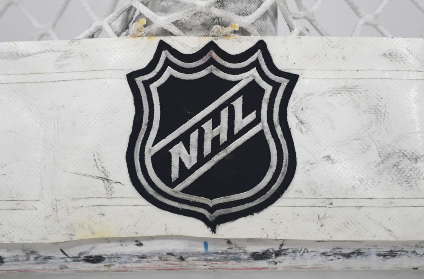 NHL logo (Photo by Patrick Gorski/Icon Sportswire via Getty Images)