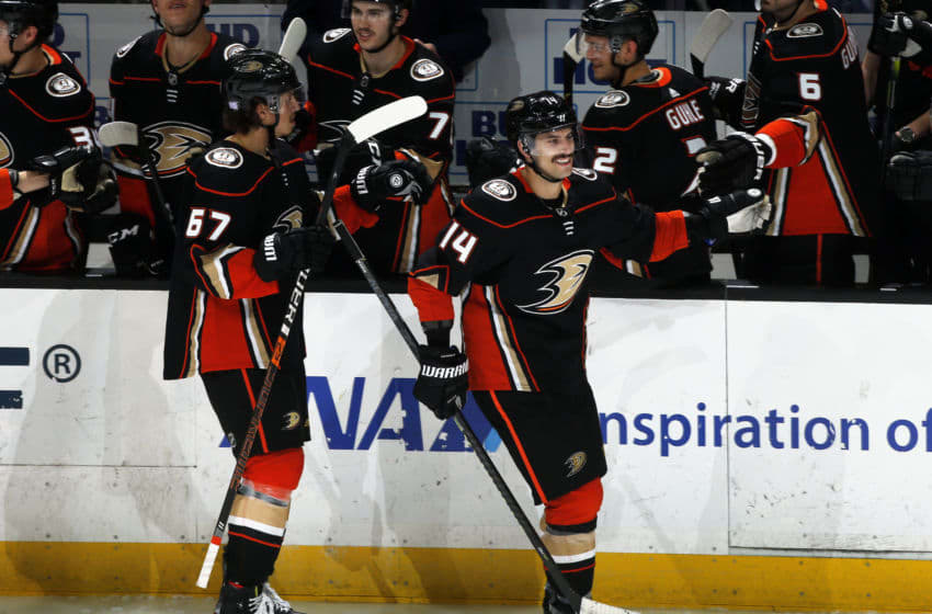 ANAHEIM, CA - NOVEMBER 12: Adam Henrique #14 and Rickard Rakell #67 of the Anaheim Ducks celebrate a second period goal with their teammates during the game against the Detroit Red Wings at Honda Center on November 12, 2019 in Anaheim, California. (Photo by Debora Robinson/NHLI via Getty Images)