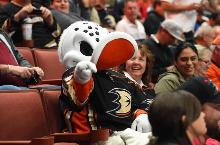 ANAHEIM, CA - OCTOBER 09: Anaheim Ducks mascot Wild Wing rallies the crowd during an NHL game between the Calgary Flames and the Anaheim Ducks on October 09, 2017 at Honda Center in Anaheim, CA. (Photo by Chris Williams/Icon Sportswire via Getty Images)