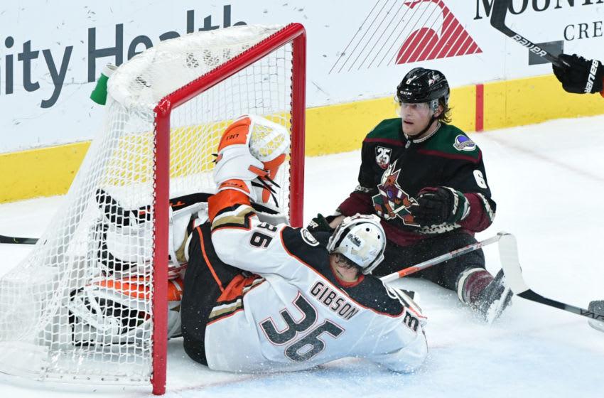 Arizona Coyotes defenseman Jakob Chychrun (6) reacts after scoring a goal abd crashing into Anaheim Ducks goaltender John Gibson (36) Mandatory Credit: Matt Kartozian-USA TODAY Sports