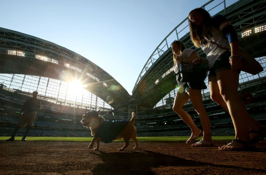 MILWAUKEE, WI - MAY 24: Fans walk their dog around the field during