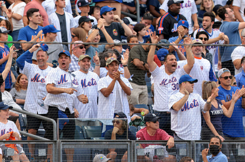 Jul 4, 2021; Bronx, New York, USA; New York Mets fans celebrate during the seventh inning of the game between the New York Yankees and the Mets at Yankee Stadium. Mandatory Credit: Vincent Carchietta-USA TODAY Sports
