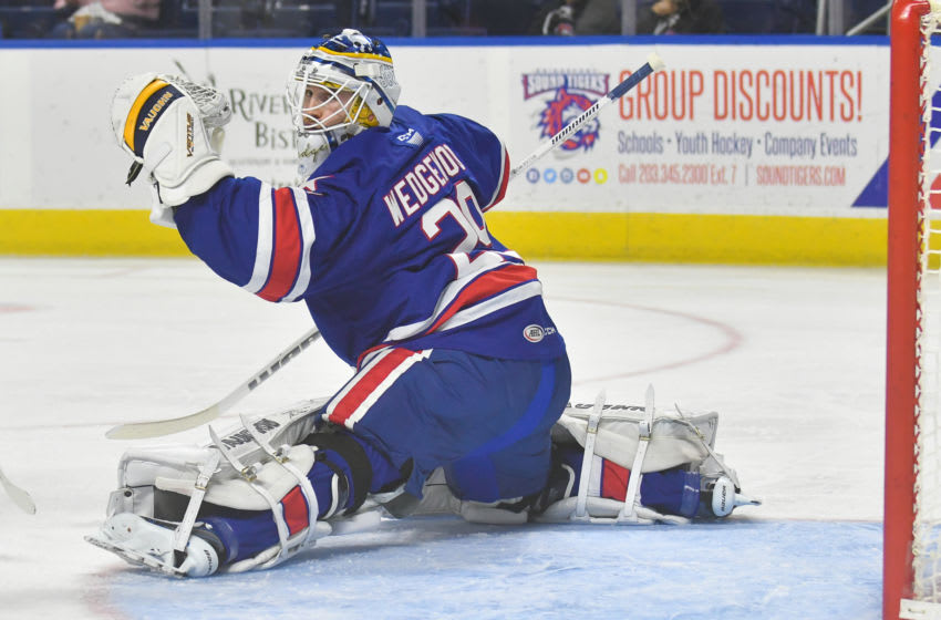 BRIDGEPORT, CT - October 13: Scott Wedgewood #29 of the Rochester Americans turns and looks for the puck during a game against the Bridgeport Sound Tigers at the Webster Bank Arena on October 13, 2018 in Bridgeport, Connecticut. (Photo by Gregory Vasil/Getty Images)