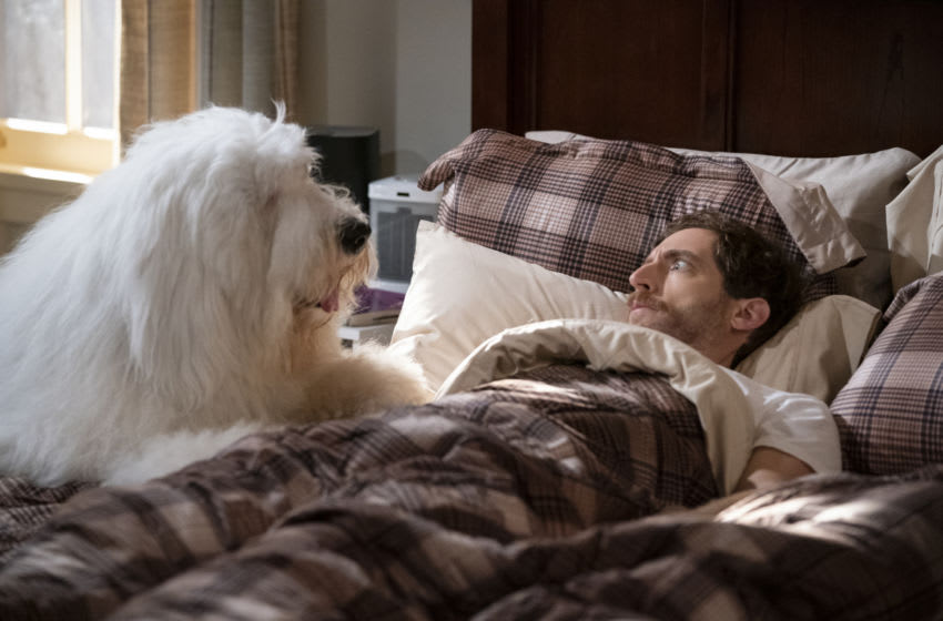 ÒForeign BodiesÓ Ð As Gina makes herself at home in DrewÕs house, Drew begins to question whether he made the right decision, on B POSITIVE, Thursday, Nov. 19 (8:31-9:01 PM, ET/PT) on the CBS Television Network. Pictured (L-R): Thomas Middleditch as Drew. Photo: Michael Yarish/CBS ©2020 CBS Broadcasting, Inc. All Rights Reserved.