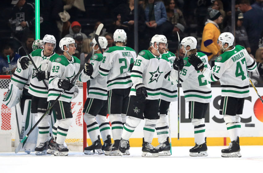 the Dallas Stars (Photo by Sean M. Haffey/Getty Images)