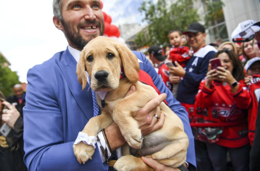 Captain, Washington Capitals (Photo by Jonathan Newton / The Washington Post via Getty Images)