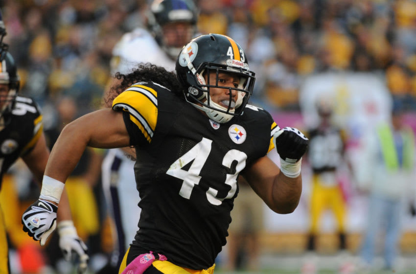 Troy Polamalu #43 of the Pittsburgh Steelers (Photo by George Gojkovich/Getty Images)
