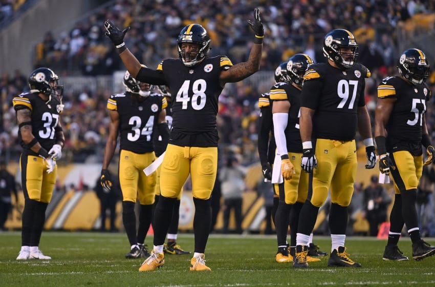 PITTSBURGH, PA - DECEMBER 30: Bud Dupree #48 of the Pittsburgh Steelers attempts to pump up the crowd in the first quarter during the game against the Cincinnati Bengals at Heinz Field on December 30, 2018 in Pittsburgh, Pennsylvania. (Photo by Justin Berl/Getty Images)