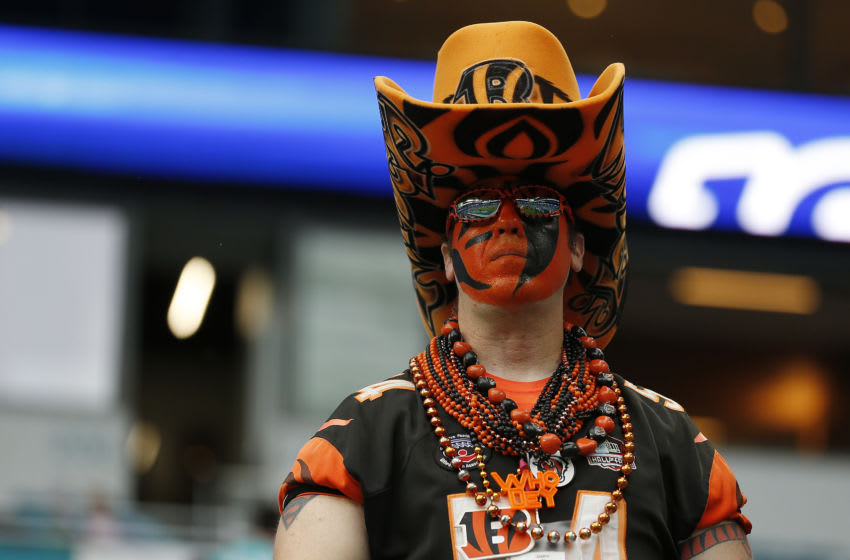 Cincinnati Bengals (Photo by Michael Reaves/Getty Images)