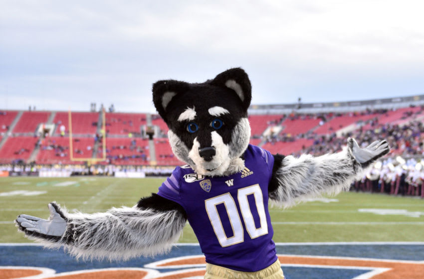 LAS VEGAS, NEVADA - DECEMBER 21: Washington Huskies mascot Harry the Husky dances prior to his team's game against the Boise State Broncos during the Mitsubishi Motors Las Vegas Bowl at Sam Boyd Stadium on December 21, 2019 in Las Vegas, Nevada. (Photo by David Becker/Getty Images)