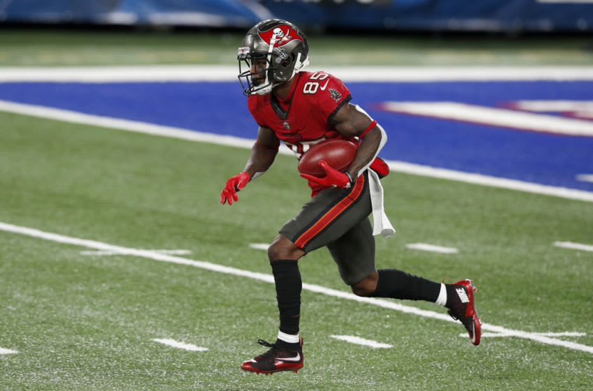 Jaydon Mickens, Tampa Bay Buccaneers,(Photo by Jim McIsaac/Getty Images)