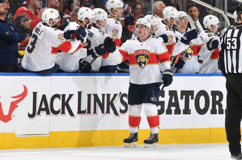EDMONTON, AB - OCTOBER 27: Noel Acciari #55 of the Florida Panthers celebrates after a goal during the game against the Edmonton Oilers on October 27, 2019, at Rogers Place in Edmonton, Alberta, Canada. (Photo by Andy Devlin/NHLI via Getty Images)