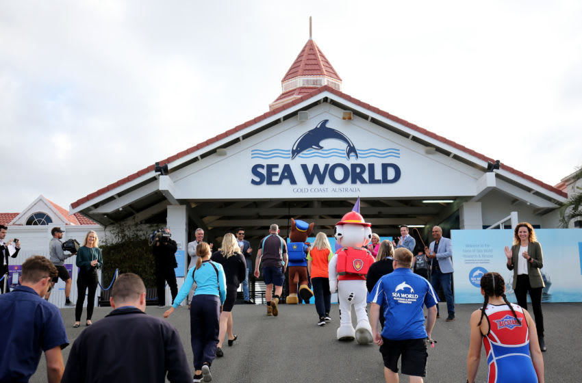 GOLD COAST, AUSTRALIA - JUNE 26: Sea World employees arrive for work on June 26, 2020 in Gold Coast, Australia. Sea World has reopened to the public with extra safety and hygiene measures in place following its temporary closure on 23 March 2020 due to the COVID-19 pandemic. Visitors to Sea World must observe physical distancing rules and provide details for contact tracing purposes. Increased sanitisation of high touch areas throughout the park have been introduced along with contactless payments. (Photo by Chris Hyde/Getty Images)