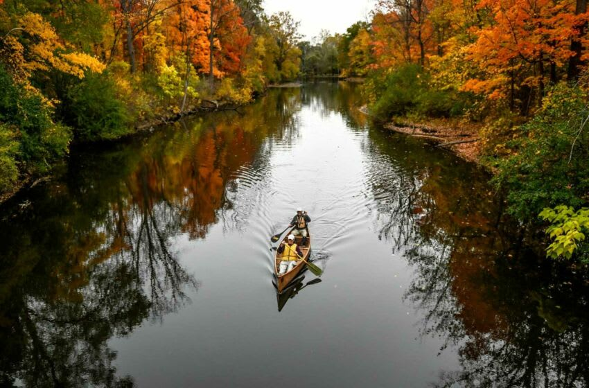 Barry Sedgwick, 97, front, and friend Don Potter, 83, float a canoe past the fall foliage on the Red Cedar River on Wednesday, Oct. 14, 2020, in Williamston. 201014 Sedgwick 098a