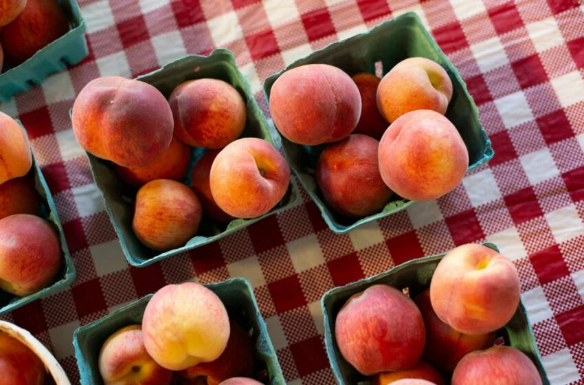 Peaches from Persimmon Hill Farm (Staff photo by Mike Christen)