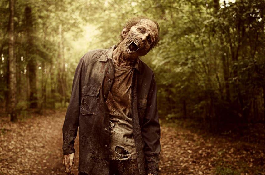 - The Walking Dead _ Season 9, Gallery- Photo Credit: Victoria Will/AMC