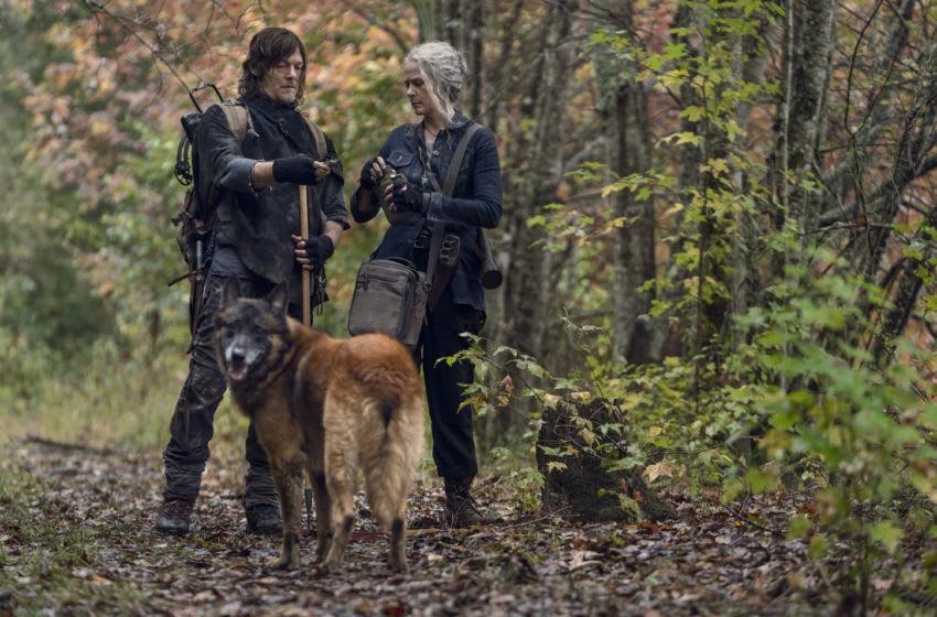 Norman Reedus as Daryl Dixon, Melissa McBride as Carol Peletier, Dog - The Walking Dead _ Season 10, Episode 18 - Photo Credit: Eli Ade/AMC